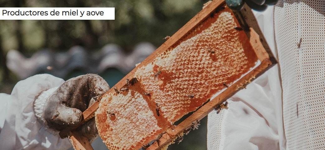 productores de miel y aove